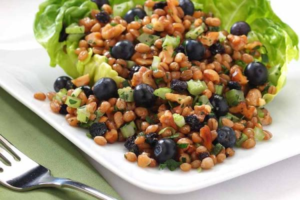 Blueberry-Wheat Berry Salad